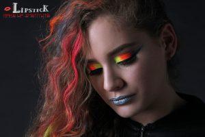 The Platiunm Makeup Course